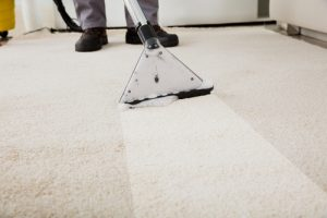 Carpet Cleaning Arundel