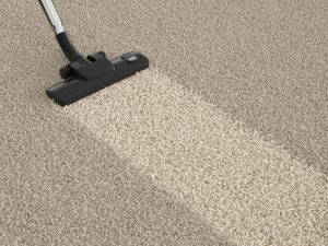 Carpet Cleaning Bundall