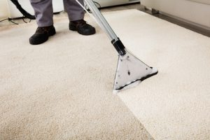 Carpet Cleaning Elanora