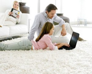 Professional Carpet Cleaning Tips