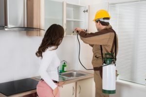 Pest Control Services Bundall