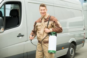 Pest Control Services Currumbin
